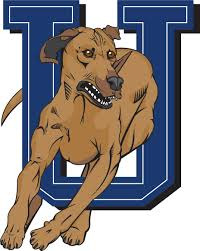 Logo for UOIT Ridgebacks